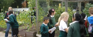 Year 5 Visit to Martineau Gardens