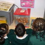 Nursery and Reception's 'Egg-stra' Special Delivery
