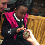 Year 2 get hands on with nocturnal animals at the Safari Park