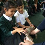 Year 2 visit the zoo