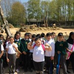 Writing in Y3: exotic animals and glorious sunshine